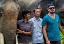 Leonardo DiCaprio: construirá santuario de animales en Indonesia