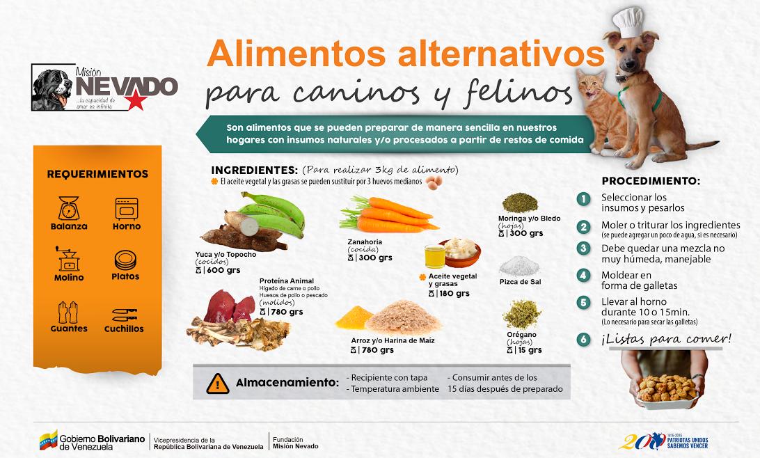 Alimentaci n alternativa para perros y gatos aproa - Alimentos recomendados para perros ...