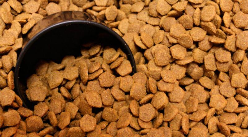 Petición: Bajen los precios del alimento para mascotas en Venezuela