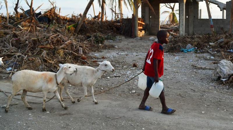 Haití huaracán 800x445