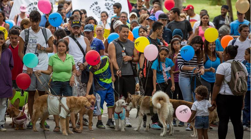 CAR002. CARACAS (VENEZUELA), 02/10/2016.- Un grupo de personas participa con sus mascotas en un acto conmemorativo al Día Mundial de los Animales hoy, domingo 2 de octubre de 2016 en la ciudad de Caracas (Venezuela). En el año 1929, el 4 de Octubre fue declarado Día Mundial de los Animales, por iniciativa de la Organización Mundial de Protección Animal en congreso celebrado en Viena. EFE/MIGUEL GUTIÉRREZ