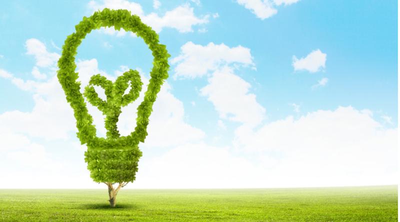 Sanciones ejemplarizantes para los que incumplan leyes ambientales