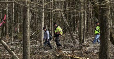 """Niño de 3 años perdido en el bosque sobrevive gracias a un """"oso amigable"""""""