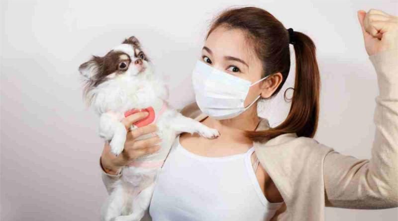 Covid-19: ¿Cómo afecta la cuarentena a las mascotas?